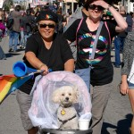 Dyke March babydog