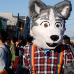 Dyke March Wolfdog